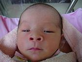 寶寶出生了:DSC03730_調整大小.JPG
