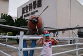 2012-05-15桃園航空城:DSC_3505.jpg