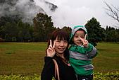 2010-11-13合歡山奧萬大:DSC_9164.jpg