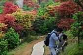 台北奧萬大PART2:DSC_1266.jpg