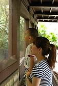 10-6-16木柵動物園:DSC_7831.jpg