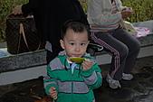 2010-11-13合歡山奧萬大:DSC_9174.jpg