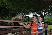 2010-7-8台南三日遊:DSC_7953.jpg