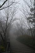 太平山外拍:DSC_0004.jpg