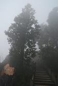 太平山外拍:DSC_0005.jpg
