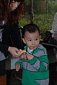 2010-11-13合歡山奧萬大:DSC_9180.jpg