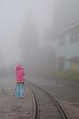 太平山外拍:DSC_0012.jpg