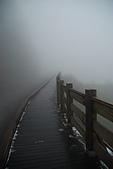 太平山外拍:DSC_0027.jpg