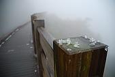 太平山外拍:DSC_0029.jpg