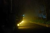 太平山外拍:DSC_0039.jpg