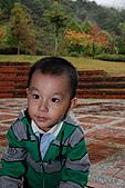 2010-11-13合歡山奧萬大:DSC_9193.jpg