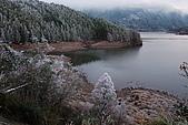 太平山外拍:DSC_0082.jpg