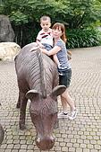 10-6-16木柵動物園:DSC_7894.jpg