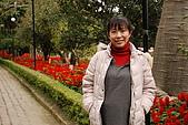2008-2-13~14台南高雄之旅:DSC_0008.jpg