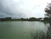 八德埤塘生態園區:圖片5.jpg