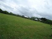 八德埤塘生態園區:圖片7.jpg