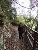 八仙山森林遊樂區:八仙山森林遊樂區