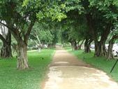 八德埤塘生態園區:DSC06210.JPG