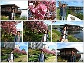 96/05/24_北海道DAY4:IMG_1223-A.JPG