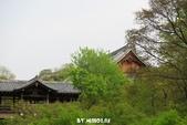 20160409~東福寺+東寺(夜晚點燈):20160409_007.JPG