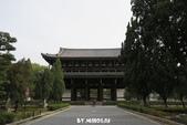 20160409~東福寺+東寺(夜晚點燈):20160409_011.JPG
