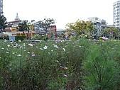 2009 寒假~宜蘭:090204-13.JPG