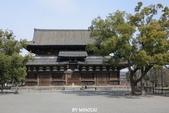 20160217~冬天的東寺:20160217_001.JPG
