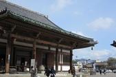 20160217~冬天的東寺:20160217_003.JPG