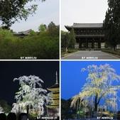 20160409~東福寺+東寺(夜晚點燈):相簿封面