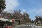 20160330~奈良興福寺:20160331_010.JPG