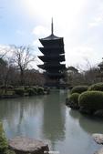 20160217~冬天的東寺:20160217_012.JPG