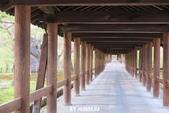 20160409~東福寺+東寺(夜晚點燈):20160409_020.JPG