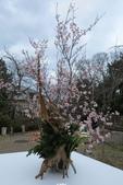20160319~京都東山花燈路:20160319_016.JPG