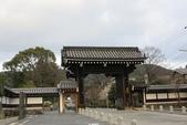 20160319~京都東山花燈路:20160319_003.JPG