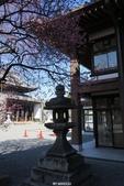 20160218~西本願寺:20160218_004.JPG