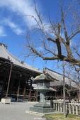 20160218~西本願寺:20160218_032.JPG
