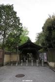 20160409~東福寺+東寺(夜晚點燈):20160409_002.JPG