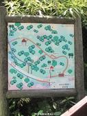 20120507~土城桐花公園:20120507_004.JPG