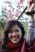 02/26/11 飛奔武陵賞櫻趣:20110226武陵賞櫻去 (65)媽咪破壞櫻花樹呀.jpg