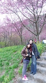 02/26/11 飛奔武陵賞櫻趣:20110226 in武陵 by 郁媽咪 (25).jpg