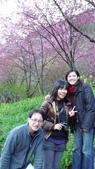 02/26/11 飛奔武陵賞櫻趣:20110226 in武陵 by 郁媽咪 (28).jpg