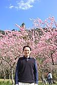 02/26/11 飛奔武陵賞櫻趣:20110226武陵賞櫻去 (21)上來辛苦開了8Hㄟ大叔 哈.jpg