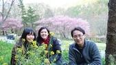 02/26/11 飛奔武陵賞櫻趣:20110226 in武陵 by 郁媽咪 (34).jpg