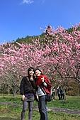 02/26/11 飛奔武陵賞櫻趣:20110226武陵賞櫻去 (25).jpg
