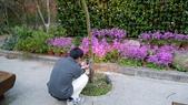 02/26/11 飛奔武陵賞櫻趣:20110226 in武陵 by 郁媽咪 (37).jpg