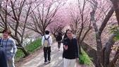 02/26/11 飛奔武陵賞櫻趣:20110226 in武陵 by 郁媽咪 (10).jpg