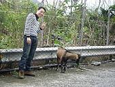 971122-23_蘭嶼之旅:Lanyu016_2.JPG