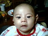 可愛寶貝:2個月大002