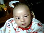 可愛寶貝:2個月大004