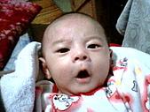 可愛寶貝:2個月大005